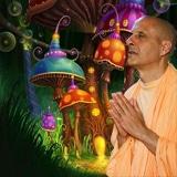 Radhanatha Swami's Psychedelic Journey
